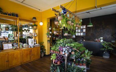 Grow Urban shop fit